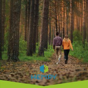 i benefici della camminata nel bosco