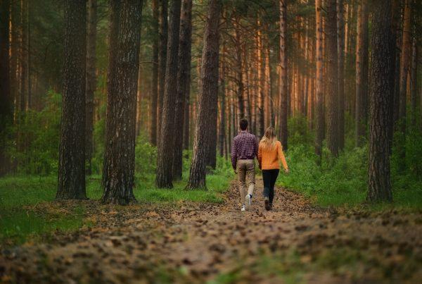 i benefici della camminata nella natura