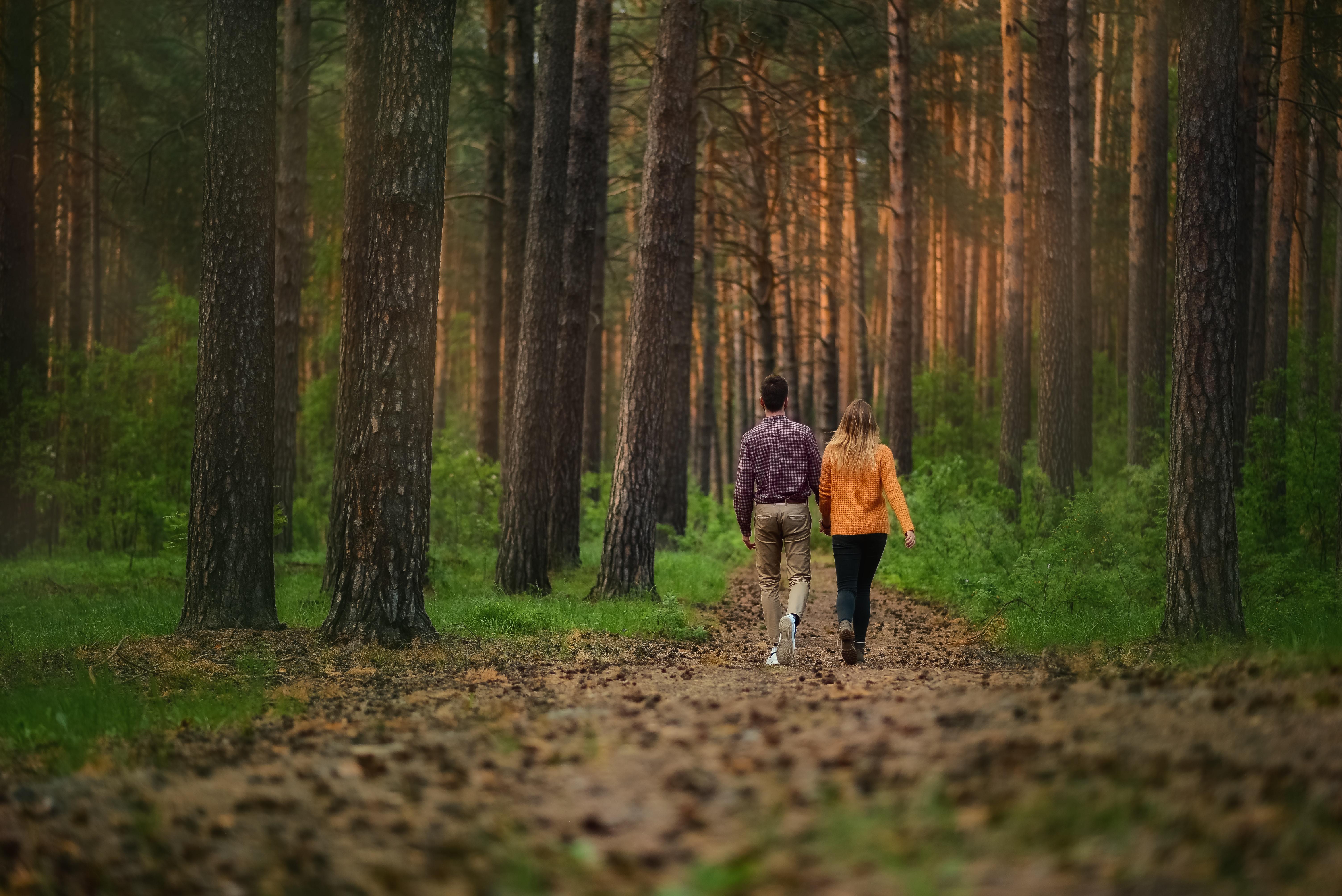 Camminare fa bene, farlo nel bosco fa meglio!